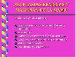 neoplasias benignas y malignas de la mama17