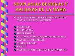 neoplasias benignas y malignas de la mama18