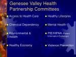 genesee valley health partnership committees