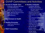 gvhp committees and activities