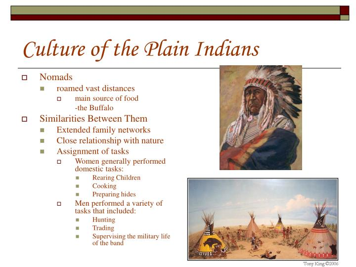culture of the plain indians n.