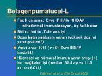 belagenpumatucel l1
