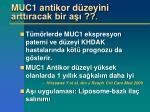 muc1 antikor d zeyini artt racak bir a