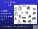 food webs 300