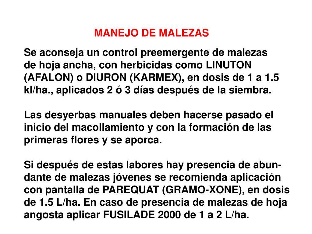 MANEJO DE MALEZAS