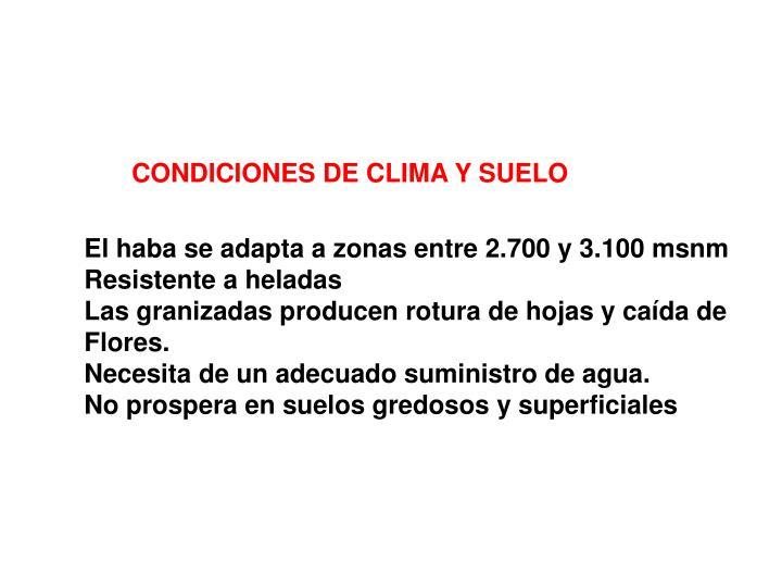 CONDICIONES DE CLIMA Y SUELO