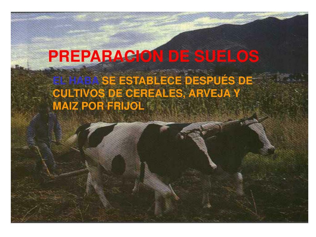 PREPARACION DE SUELOS