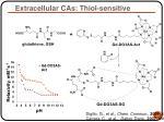 extracellular cas thiol sensitive