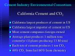 cement industry environmental consortium2