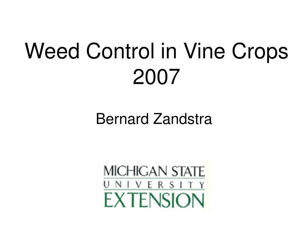 weed control in vine crops 2007 l.