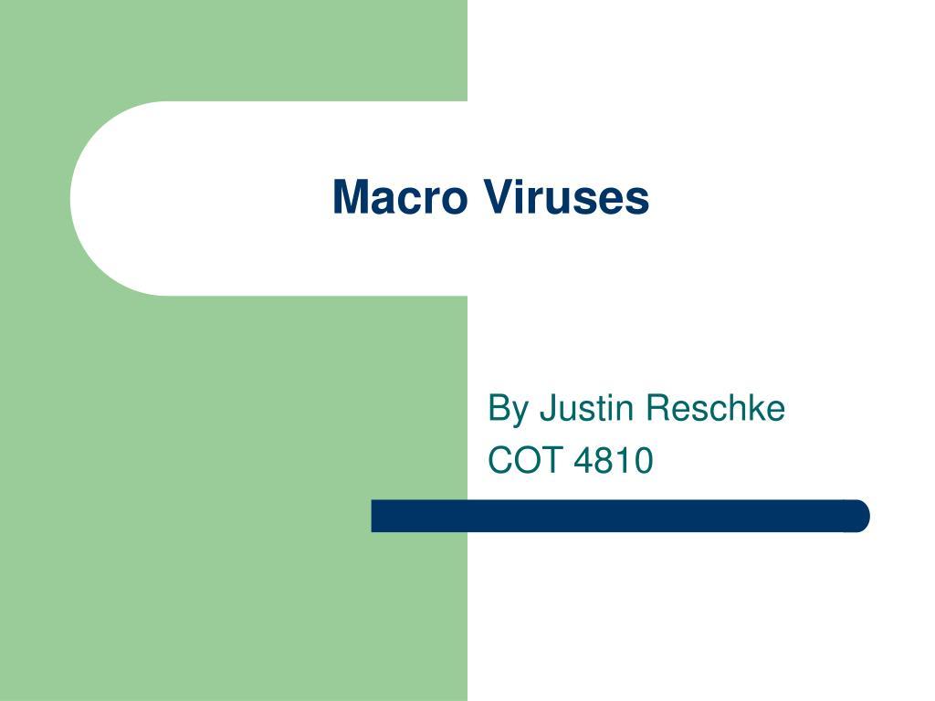 macro viruses l.