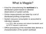 what is magpie