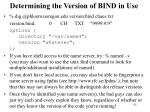 determining the version of bind in use