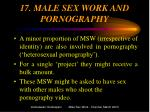 17 male sex work and pornography
