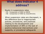 what does indicator 4 address