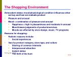 the shopping environment