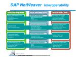 sap netweaver interoperability