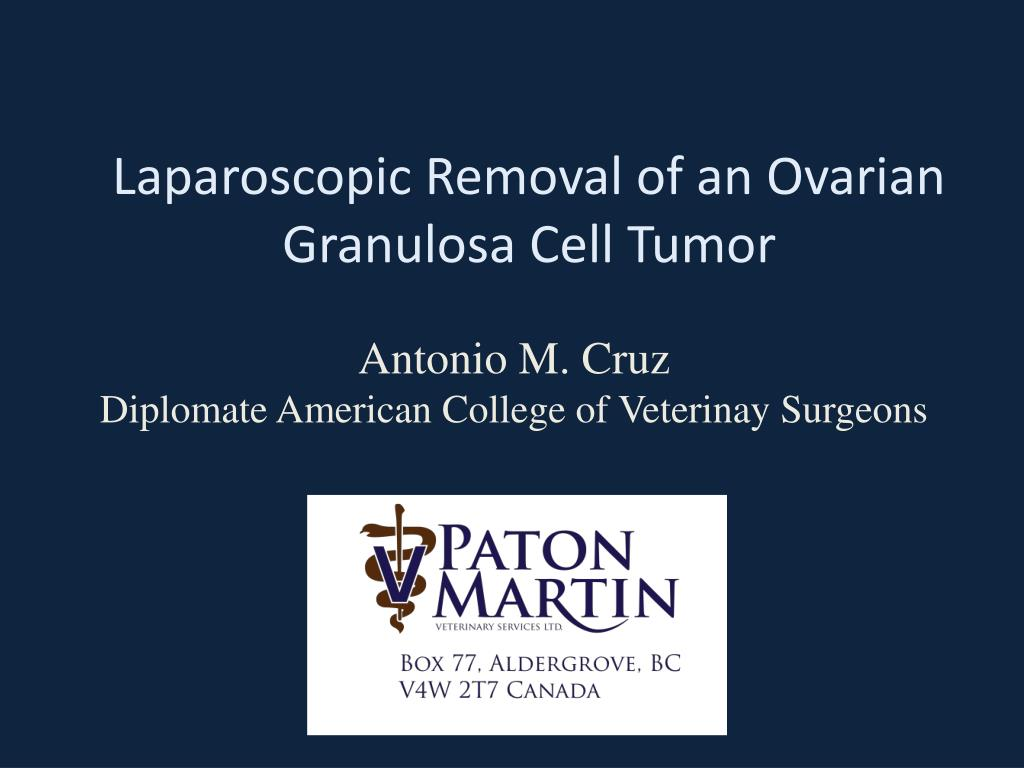 laparoscopic removal of an ovarian granulosa cell tumor l.
