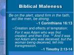biblical maleness