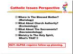 catholic issues perspective