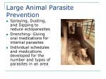 large animal parasite prevention