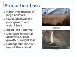 production loss
