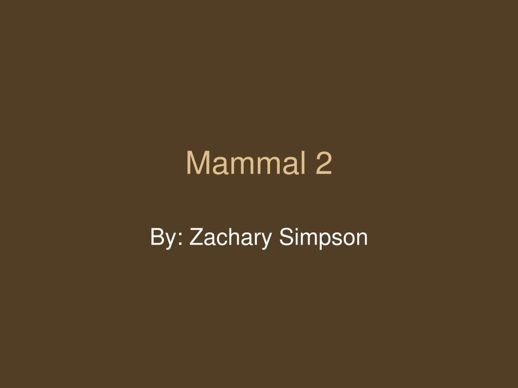 mammal 2 l.