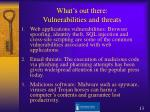what s out there vulnerabilities and threats13