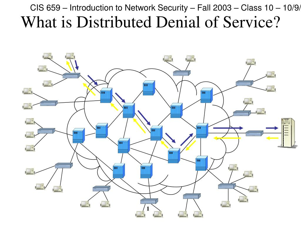 what is distributed denial of service l.