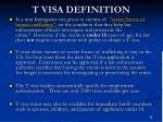 t visa definition