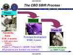 the cbd sbir process