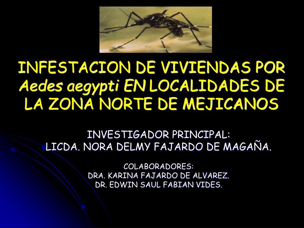 infestacion de viviendas por aedes aegypti en localidades de la zona norte de mejicanos l.