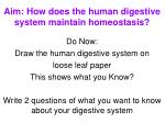 aim how does the human digestive system maintain homeostasis