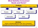 what satisfies consumers needs and wants