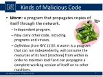 kinds of malicious code