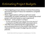 estimating project budgets