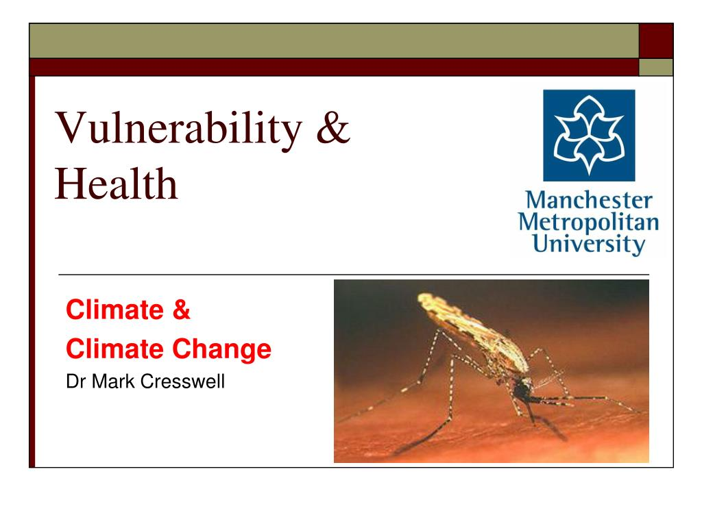 vulnerability health l.