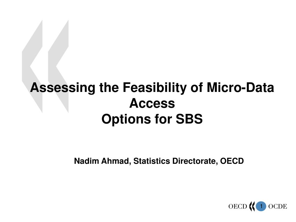 assessing the feasibility of micro data access options for sbs l.