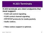 h 323 terminals