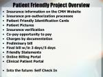 patient friendly project overview