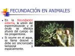 fecundaci n en animales