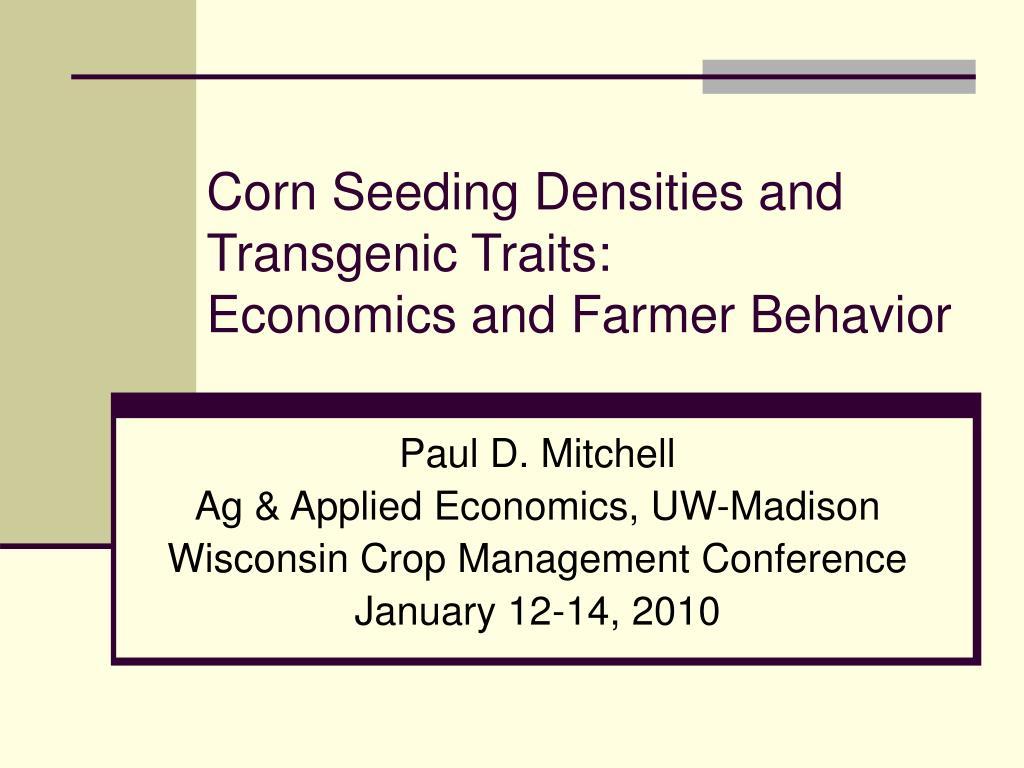 corn seeding densities and transgenic traits economics and farmer behavior l.