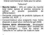 int ret commercial en italie pour le safran taliouine