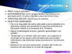 grupos flexibles