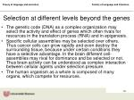 selection at different levels beyond the genes