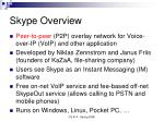 skype overview