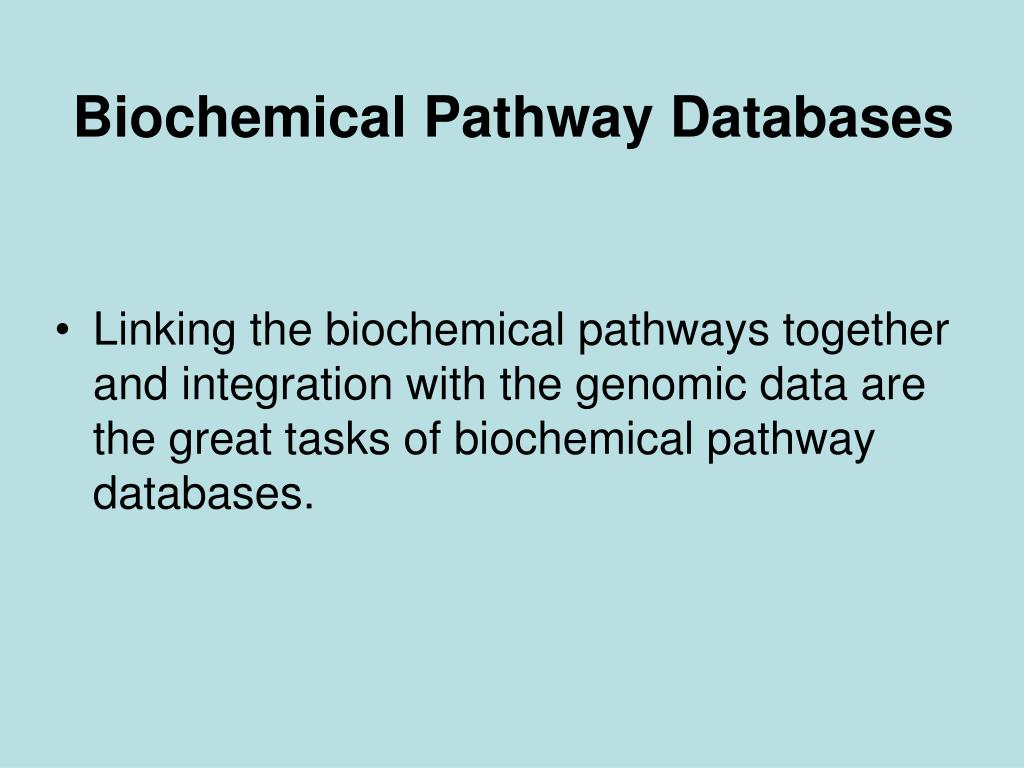 Biochemical Pathway Databases