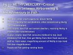 hg to methylmercury critical connection between airborne hg methylmercury in fish6