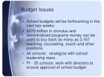 budget issues1