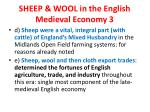 sheep wool in the english medieval economy 3